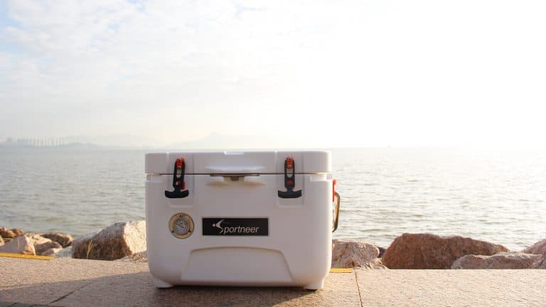 Best Camping Cooler for the Money Review