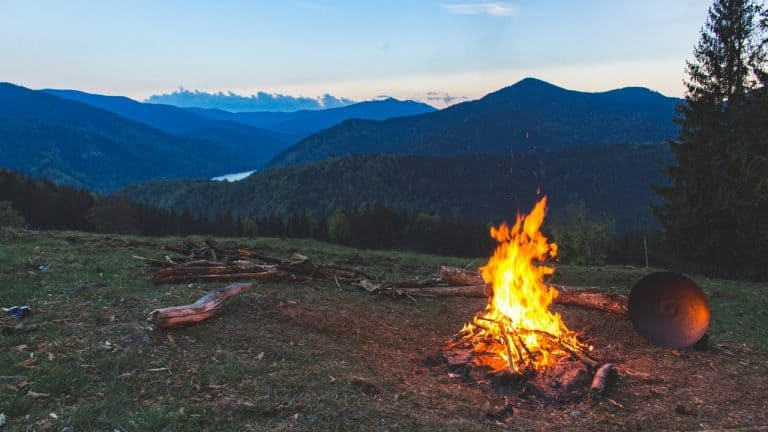 How to Start A Fire with Damp Wood Image